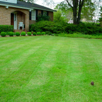 Lawncare in Dracut