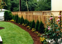 Lattice Top Cedar Fence
