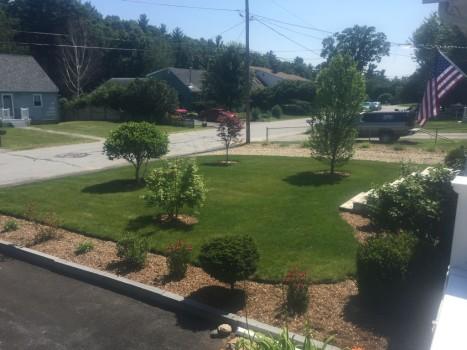 Spring Cleaning Checklist for Lawncare - Best Landscaper for Spring Cleanup